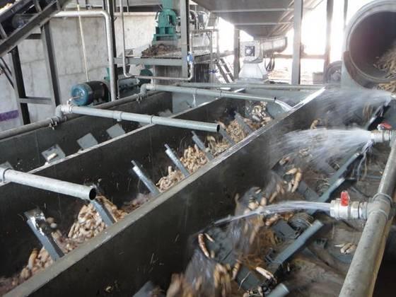 Kassava industries in Africa