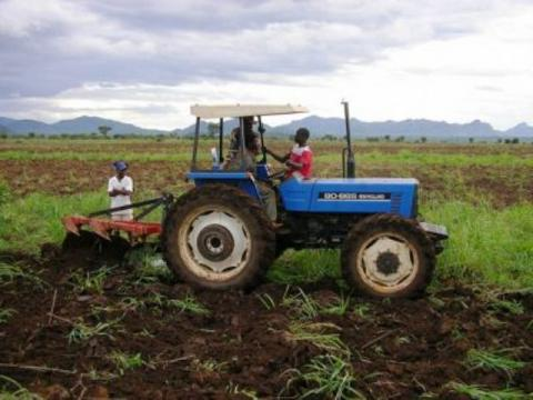 Preparing land for soybean production in Africa