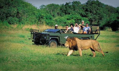 African tourism continues