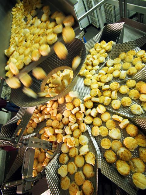 Food Processing Target Industries in Africa