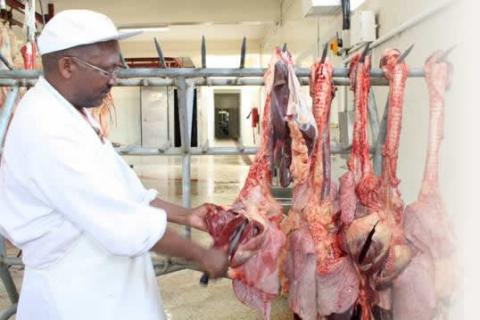 African Quality Meat