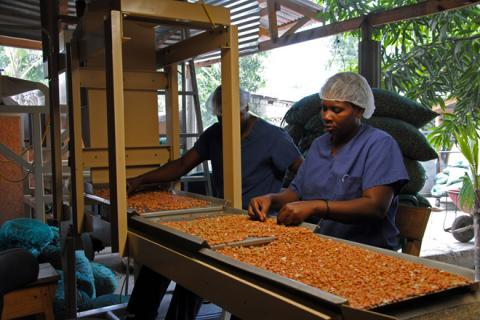 Peanut Processing in Africa